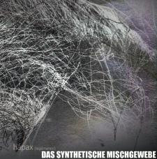 "Das Synthetische Mischgewebe ""Hapax (legomenon)"" CD"